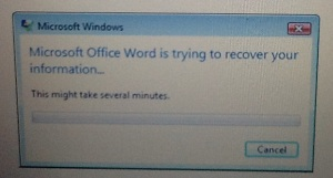 word error msg 2