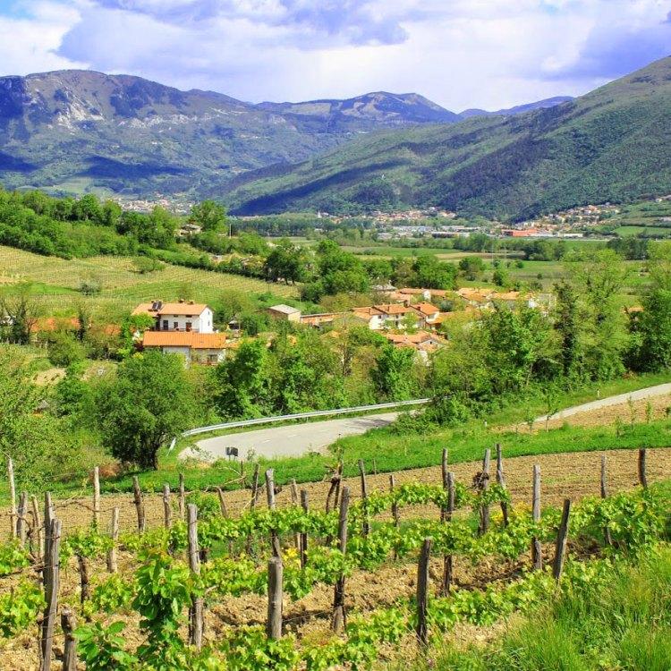 courtesy of www.sloveniaforyou.com